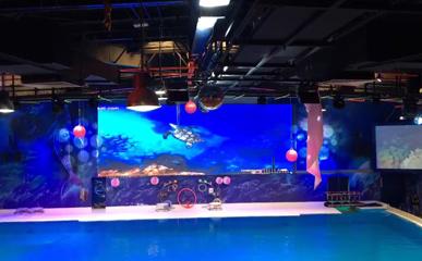 迪拜海洋馆P6户外防水LED显示屏